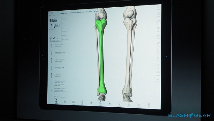 در نهایت آخرین نسخه ی نمایشی از اپل پنسل، 3D4Medical بود که یک برنامه ی سلامتی سه بعدی می باشد که آناتومی را نشان می دهد و اینکه می توانید از این قلم برای اینکه تک تک اجزای بدن را باز کنید و آن را تفسیر کنید، استفاده نمایید.