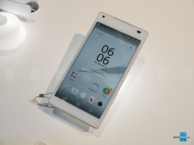 به نظر می رسد سونی در طی فرایند پیش تولید خود به این نتیجه رسیده است که کاملا از صفحه نمایش 720p گوشی اکسپریا زد 3 کامپکت خود راضی بوده و تصمیم گرفته که زد 5 کامپکت نیز همین رزولوشن را داشته باشد، حداقل از لحاظ اسمی می توان گفت که زد 5 کامپکت از این منظر شبیه به زد 3 کامپکت می باشد. بنابراین این گوشی با صفحه نمایش 4.6 اینچی IPS LCD خود از رزولوشن 720 در 1280 بهره خواهد برد.