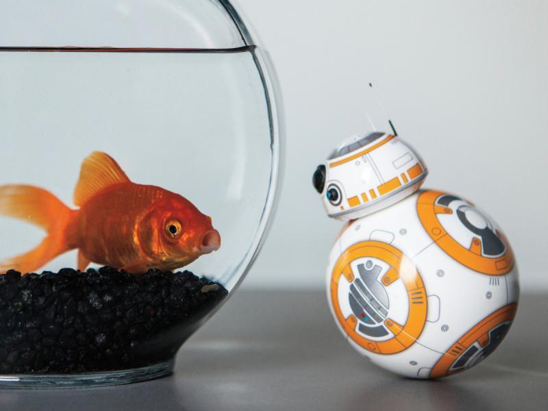 آیا به زودی شاهد ربات BB-8 جنگ ستارگان خواهیم بود؟
