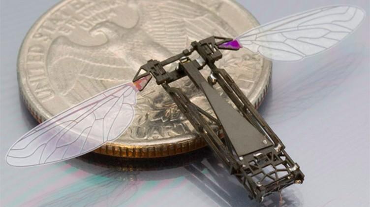 روبات زنبور عسل دانشگاه هاروارد به توانایی جدیدی مجهز می شود