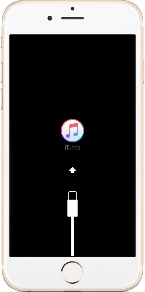 در واقع دکمه لاک و هوم را همزمان فشار داده و تا زمان دیدن لوگوی اپل آن را رها نکنید