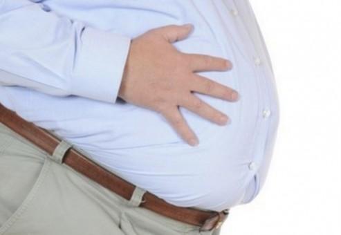 باکتری های روده می تواند کلیدی برای مبارزه با چاقی باشد