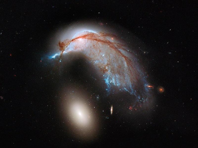 اما این پایان کار نیست؛ این مبارزه تا میلیاردها سال و تا زمانیکه دو سیاهچاله ی عظیم که در مرکز این دو کهکشان قرار دارد به یکدیگر نزدیک شده و ادغام شوند، ادامه خواهد داشت. بعد از 6 میلیارد سال از جنگ دو کهکشان، آسمان شب در زمین، با هسته های جدید و درخشان کهکشان جدید، فروزان خواهد شد، البته اگر زمینی باقی بماند. چرا که پیش بینی می شود خورشید تا 5 میلیارد سال دیگر زمین را خواهد بلعید. ادغام و یکی شدن کهکشان ها، میلیاردها سال طول خواهد کشید، به همین دلیل ستاره شناسان به جستجو در آسمان ها پرداخته اند تا مراحل مختلفی از این برخورد عظیم را بیایند. در تصویر زیر، برخورد و ادغام دو کشهکشان مارپیچی را در مراحل اولیه ی آن می بینید. این تصویر در سال 2009 توسط هابل به ثبت رسیده است. و مجموعه ی دیگری از کهکشان ها، که در آن یک کهکشان با جاذبه ی کهکشان دیگر کشیده و پیچیده شده است.