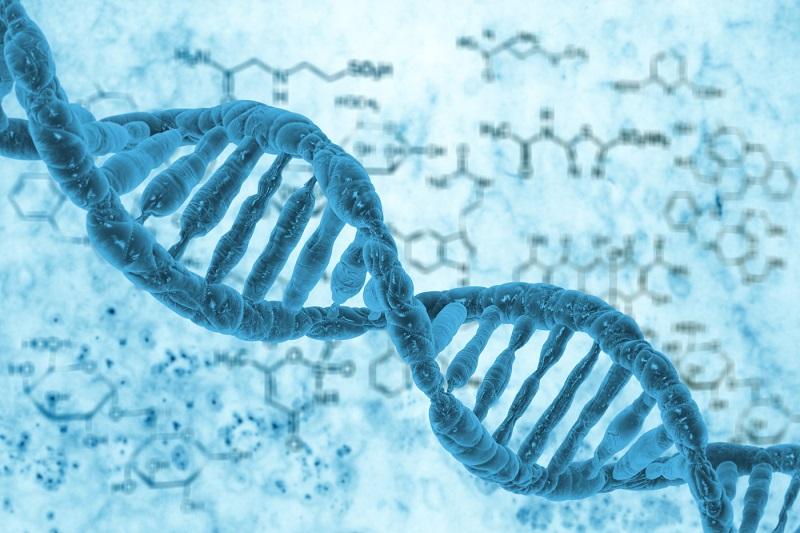 ساخت کوچکترین دیود جهان با استفاده از مولکول DNA