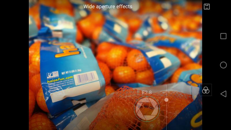 گوشی با استفاده از اطلاعات عمق که از دو لنز به دست آورده، عکس را تنظیم می کند.