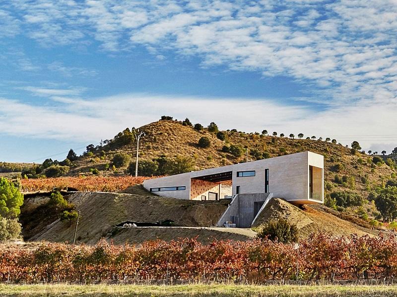 بهترین کارخانه: شراب سازی والدمونجاس؛ یک کسب و کار خانگی در ریبرا د دوئرو؛ اسپانیا که طراحی آن را Agag+Paredes به عهده داشته است.