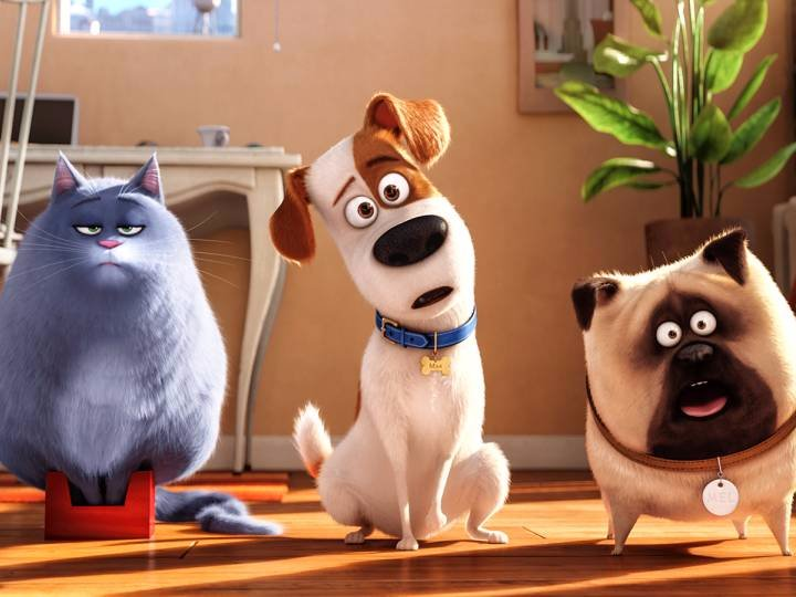 زندگی اسرار آمیز حیوانات خانگی ، انیمیشنی که بار دیگر رکورد باکس آفیس را می شکند