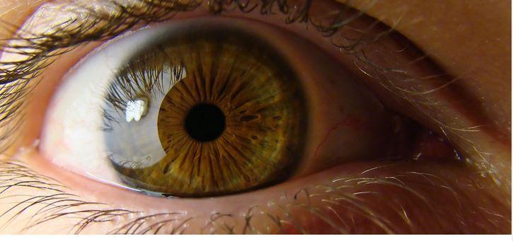 کاربرد اسکنر چشم نوت 7 در کسب و کار های دیگر سامسونگ