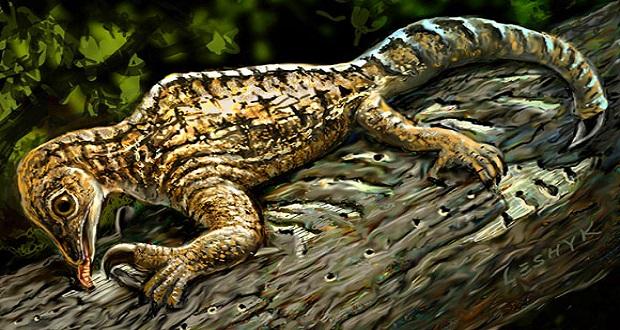 کشف خزنده عجیب ماقبل تاریخی در نیومکزیکو؛ درپانوساروس