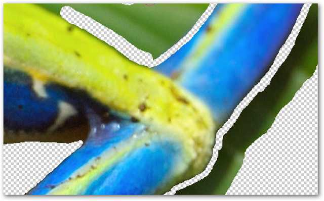 remove-complex-backgrounds-from-images-in-photoshop-10