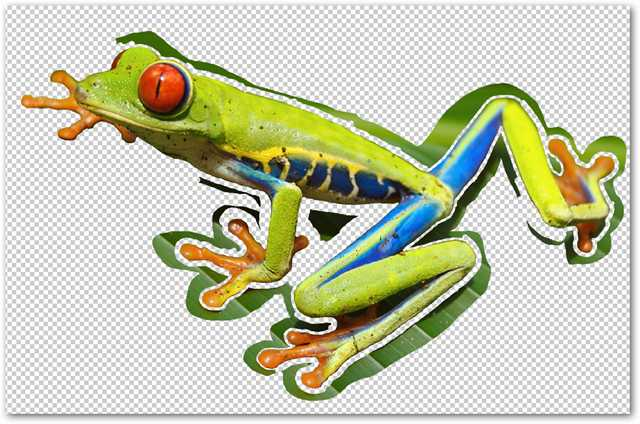 remove-complex-backgrounds-from-images-in-photoshop-11