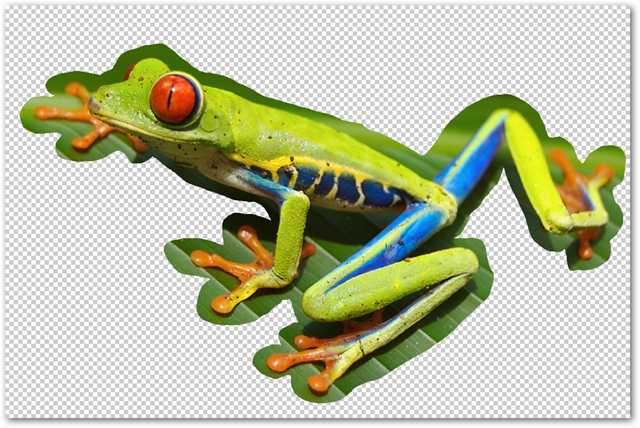 remove-complex-backgrounds-from-images-in-photoshop-6
