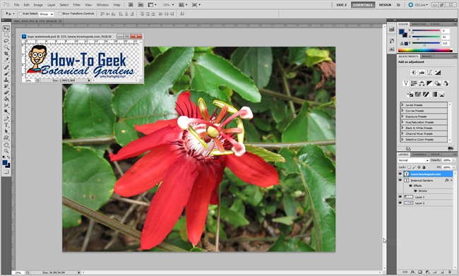 how-to-add-and-remove-watermarks-text-or-logos-to-and-from-images-3