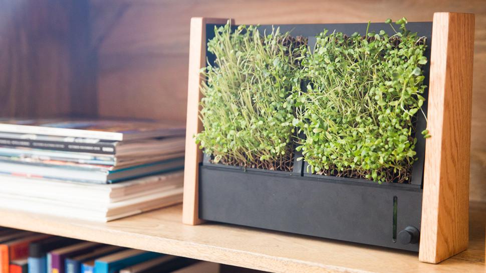 باغچه های عمودی EcoQube Frame