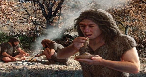 نئاندرتال ها از نوعی آسپرین باستانی برای درمان خود استفاده می کرده اند!