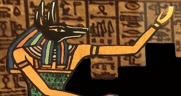 گونه کفتاردندان جدید به نام آنوبیس، خدای مردگان در اساطیر مصر باستان نام گذاری شد