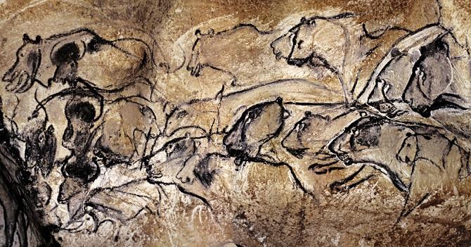 نقاشیهای حیوانات به ما میگویند که این مکان متعلق به حیوانات بوده است. بسیاری از حیوانات غار شووه در زندگی وحشی به تصویر کشیده شدهاند، اما هیچ جا اثری از ترس نیست