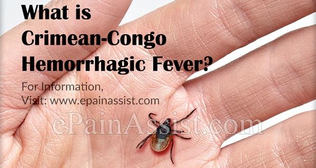 هر آنچه که باید درباره تب کریمه کنگو بدانید؛ راه های انتقال، پیشگیری و درمان