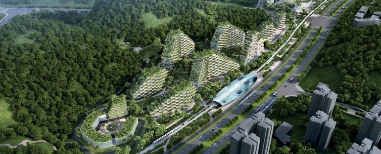 شهر جنگلی لیو ژو امکان جذب سالانه حدود 10 هزار تن دیاکسید کربن و 57 تن ذرات آلاینده هوا را خواهد داشت. در همین حال این شهر جنگلی حدود 900 تن اکسیژن هم تولید میکند