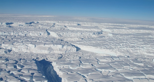 """دسامبر سال گذشته هم کمیته علوم، فضا و تکنولوژی مجلس نمایندگان آمریکا به دلیل ریتوییت خبر گمراه کننده برایبارت نیوز (وبسایت محافظهکار) در مورد تغییرات آب و هوایی مورد انتقاد قرار گرفت. در مقاله منتشر شده در این وبسایت با عنوان: """"شیرجه دمای جهانی. سکوت یخی آبوهوای هراسناک""""، اشاره شده، دمای سیاره نسبت به سوابق ثبت شده کاهش یافته است. چیزی که به ظاهر، روند اخیر افزایش سریع دمای زمین را نادیده گرفته است"""