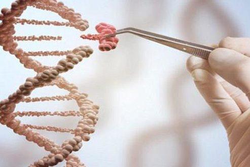 موفقیت محققان در اصلاح ژنتیکی در نطفه انسانی