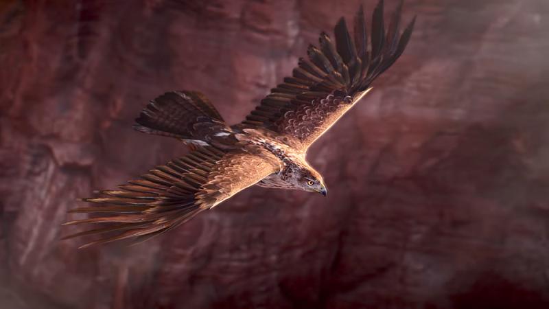 حتما در تصاویر بالا، عقاب را مشاهده کرده اید؛ این عقاب نیز در حقیقت جزئی از بازی است. او همیشه همراه بایک بوده و شخصیتی است که می توانید به جای او بازی کنید.