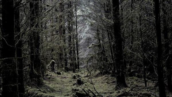 عکاسی در مکانهای تاریک