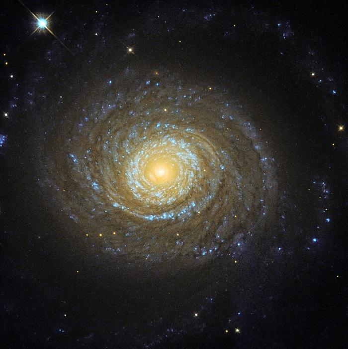 احتمالا با تماشای هسته این کهکشان مارپیچی باشکوه سرگیجه می گیرید.