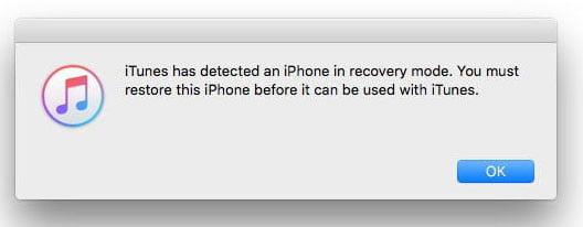 با فعال کردن مود DFU، پیامی را روی نمایشگر آیفون مشاهده می کنید که نشان می دهد آیتونز دستگاه شما را در مورد ریکاوری شناسایی کرده است.