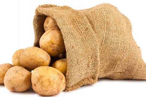 نوعی مادهی سرطان زا در سیب زمینی و نان سوخاری توسط نانوتکنولوژی شناسایی شد