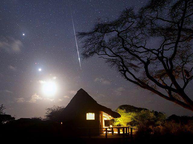 در طول ۲۰ سال گذشته که کار عکاسی آسمان شب کردهام، با شهابهای خیرهکننده بسیاری، تحت عنوان آذرگوی، مواجه شدهام. این تصویر را در کمپی در کنیا ثبت کردم؛ یک درخت اقاقیا (Acacia)، ماه و سیارات مریخ، مشتری و ونوس نیز به تصویر جلوه بخشیدهاند. بارش شهابی جوزایی را تقریبا در هر نقطهای از دنیا میتوان به نظاره نشست، اما در نیمکره شمالی شانس موفقیت مقداری بیشتر است. انتظار میرود اوج بارش جوزایی از نیمه شب تا ۴ بامداد ادامه داشته باشد و در هر دقیقه حدود ۱ تا ۲ شهاب را بتوان در آسمان مشاهده کرد. شروع بارش جوزایی در ۹ شب ۲۲ آذر خواهد بود. بهترین راه برای لذت بردن از این بارش دوری از نورهای مزاحم شهری و تمرکز بر آسمان مطلقا تاریک خواهد بود.