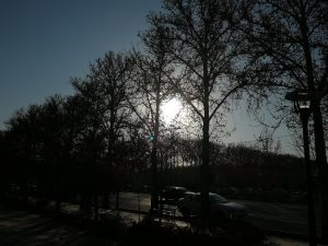 عکاسی با دوربین هواوی آنر 9