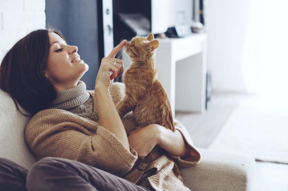 روانشناس حیوانات
