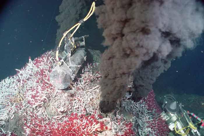 در تمام جهان، منافذ زیردریایی فعال، 34 مایل مربع از سطح زمین را تشکیل می¬دهند، چیزی کم-تر از یک درصد مساحت پارک ملی یلوستون. این مناطق بسیار محدود و کمیاب و البته ناشناخته¬اند. جانداران آب¬های عمیق تاکنون کمک زیادی به کشفیات مختلف کرده¬اند