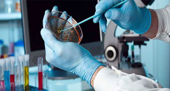 تشخیص و پیش بینی ابتلا به بیماری با کارت های ژنتیک