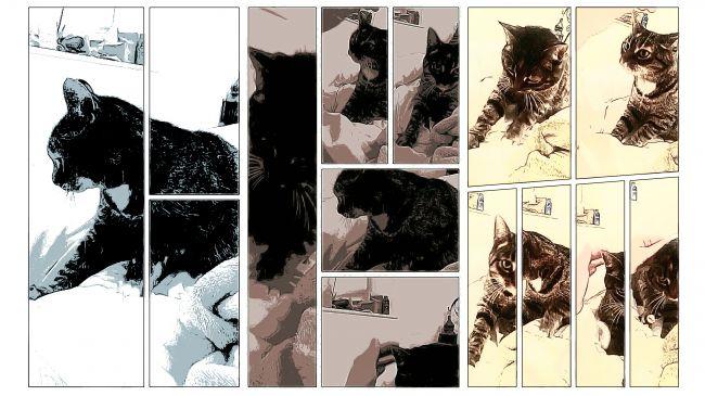 استوری بورد (Storyboard)