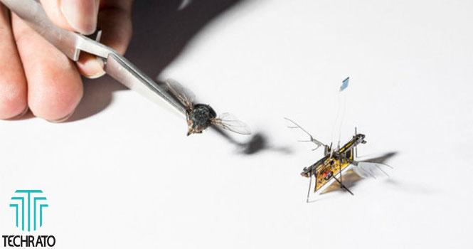 حشره رباتیک RoboFly ؛ پرواز با استفاده از پرتوهای لیزر
