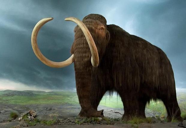 ابداع مجدد طبیعت با احیای حیوانات منقرض شده
