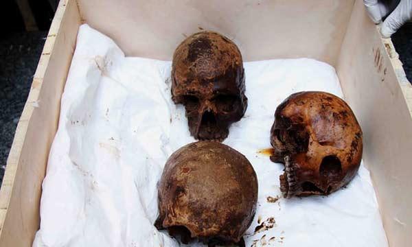 این سه جمجمه که به احتمال زیاد متعلق به سربازان هستند، برای تاریخگذاری، تعیین علت مرگ و انجام بررسیهای بیشتر به وزارت آثار باستانی مصر منتقل شدهاند