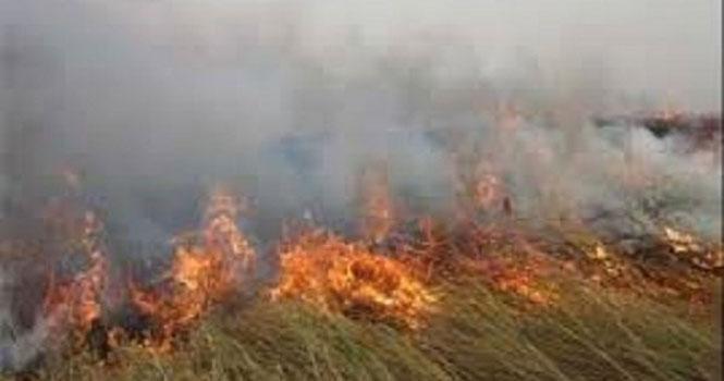 اختصاصی تکراتو/ هورالعظیم همچنان در آتش میسوزد ؛ تغییرات آب و هوایی مشهودتر از هر زمان!