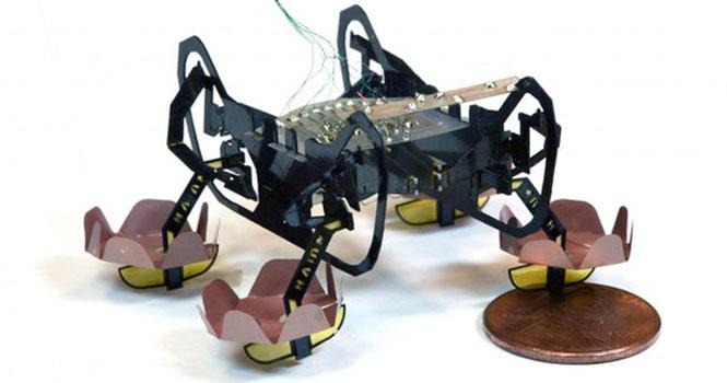 این ربات جدید قادر به راه رفتن در خشکی و آب است