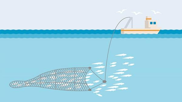 ماهیگیری ترال