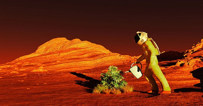 کشاورزی در مریخ ؛ چگونه در مریخ محصولات غذایی تولید کنیم؟