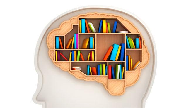 سازمان دهی حافظه {hendevaneh.com}{سایتهندوانه} - Brain memory iStock 000021178612 - چگونه درس بخوانیم ؛ روش مطالعه صحیح دروس از دید علم