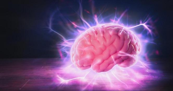 ساخت مرکز مغز در ایران با هدف آشنایی کودکان با عملکرد مغز