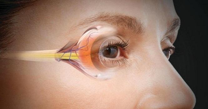 ساخت مینی شبکیه آزمایشگاهی برای درمان نابینایی