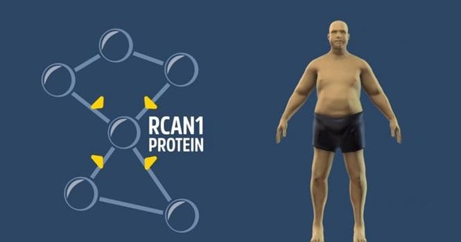 کشف داروی کاهش وزن ؛ وزن کم کردن بدون ورزش و رژیم غذایی