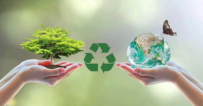 جایگزینی پلاستیک با مواد تجزیه پذیر در بسته بندی محصولات شرکت سامسونگ