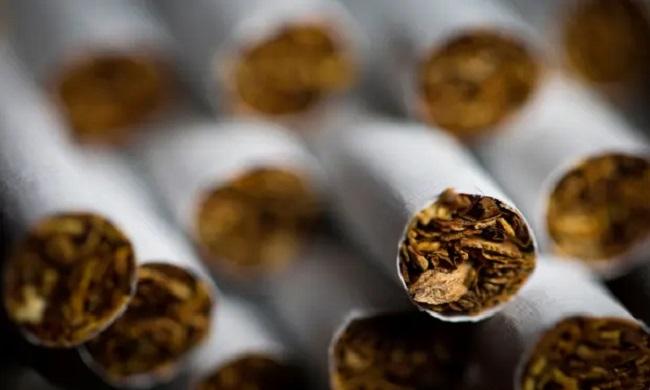 سیگار و مصونیت در برابر کرونا