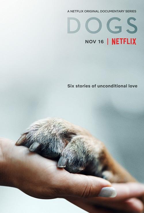 سریال سگها Dogs